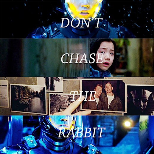 dont_chase_the_rabbit-330